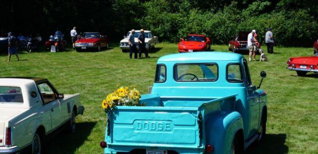 dodge truck c series
