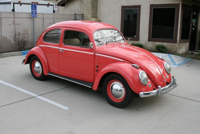 1957 volkswagen european model oval window vw bug 1954 for 1957 oval window vw bug