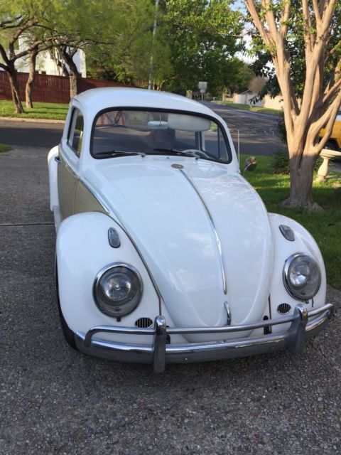 1963 Beautiful Classic Vw For Sale Volkswagen Beetle