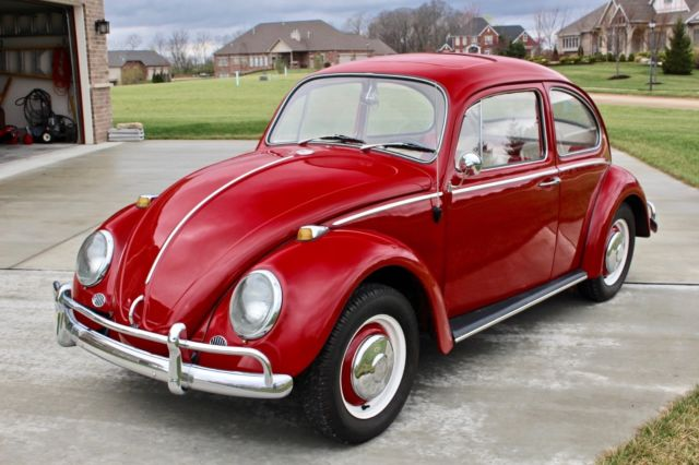 1966 Volkswagon VW Beetle w/ Fresh Engine Rebuild for sale