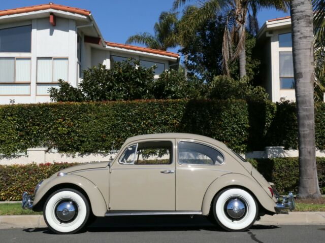 1967 VW 'Euro' Bug -- VERY RARE, New Paint, Sunroof!! for
