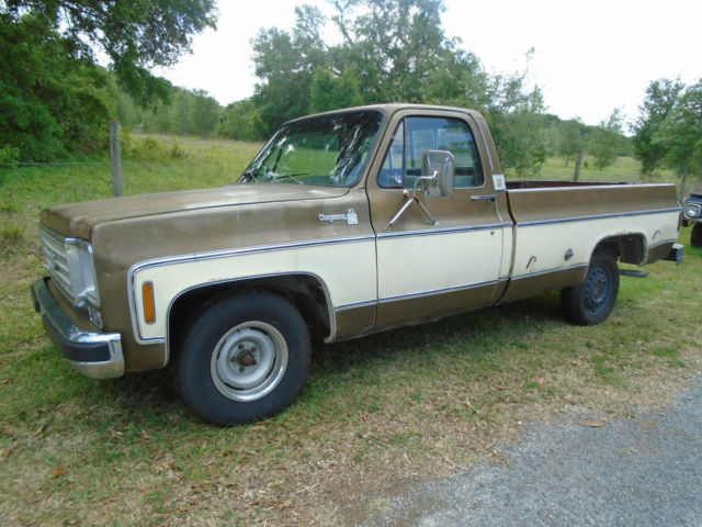 1976 chevrolet cheyenne was an a c truck for sale chevrolet cheyenne 1976 for sale in deland. Black Bedroom Furniture Sets. Home Design Ideas