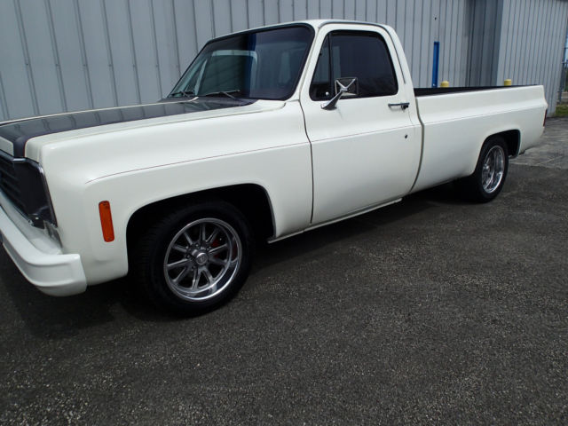 1976 chevy c 10 pickup custom for sale chevrolet other pickups 1976 for sale in buffalo grove. Black Bedroom Furniture Sets. Home Design Ideas