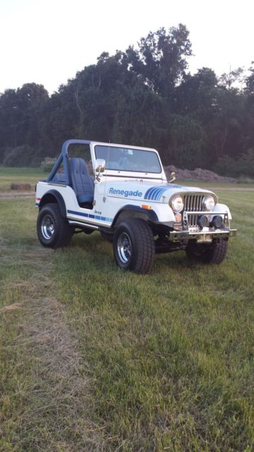 1979 cj 5 jeep renegade for sale jeep cj 1979 for sale in south plainfield new jersey united. Black Bedroom Furniture Sets. Home Design Ideas