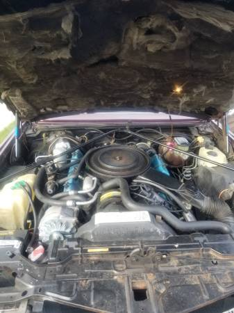 1981 cadillac eldorado 8 6 4 engine 60k original miles for sale cadillac eldorado 1981 for sale in west islip new york united states davids classic cars