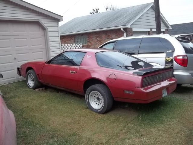 1982 pontiac trans am rust free perfect for kitt knight rider car 1983 1984 for sale pontiac. Black Bedroom Furniture Sets. Home Design Ideas