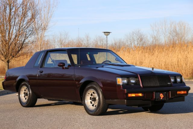 1987 buick regal t type hardtop 42k actual miles time. Black Bedroom Furniture Sets. Home Design Ideas